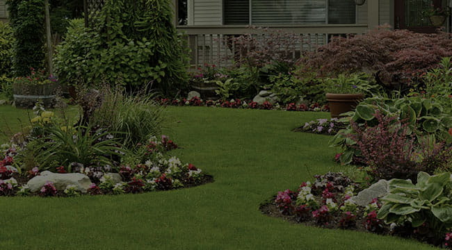 North Brunswick Landscape Design